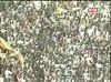 VIDEOS Direct Sénégal vs Cameroun: C'est parti pour 90 mn!