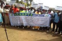 Reportage veille-tabaski : Grève annoncée du RENAPTA, pas d'impact réel sur le réseau Wari