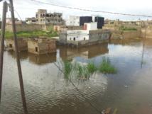 Keur Massar : La Cité Sotrac submergée par les eaux de pluies, appelle à l'aide