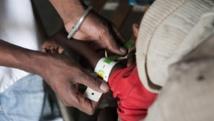 Madagascar: une délégation de la FAO pour alerter sur l'insécurité alimentaire