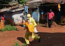 Mali,Santé de la population : Menace de la ''Fièvre de la vallée du rift''
