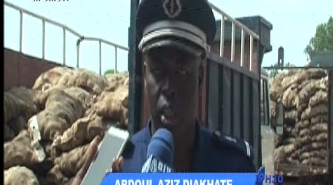 Thiaroye : 55 tonnes de pommes de terre pourries saisies par la gendarmerie