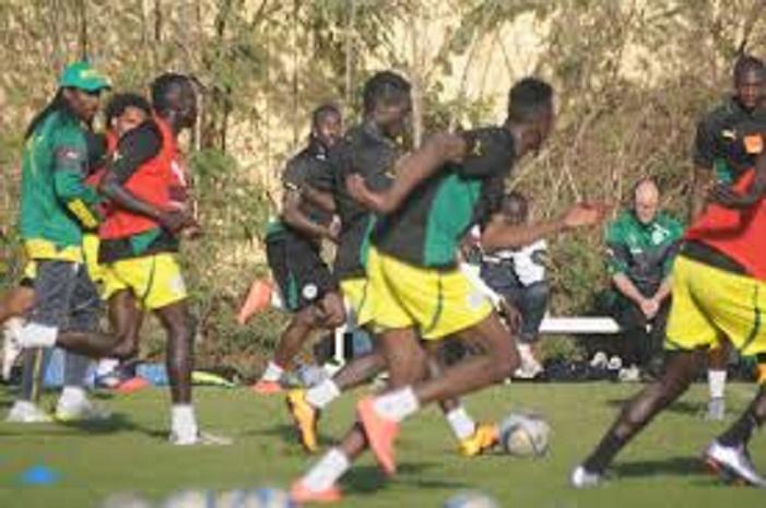 """Les """"Lions"""" en regroupement à Johannesburg: 7 joueurs manquent encore à l'appel"""