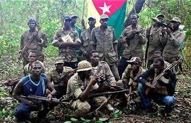 Bayanka - Bounkiling: le MFDC enlève puis libère des topographes et villageois
