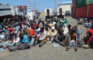 Expulsions imminentes des migrants noirs d'Alger : les précisions d'un ressortissant sénégalais