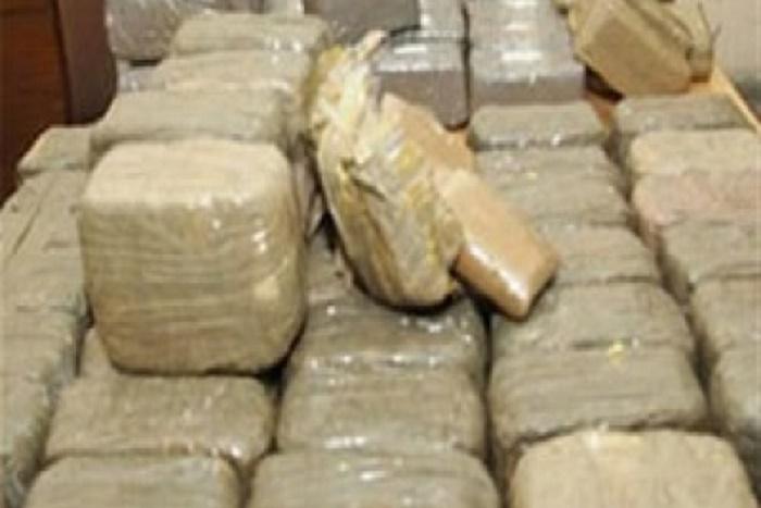 Kolda : la Douane saisit 117 kg de chanvre indien d'une valeur de plus de 7 millions de francs CFA