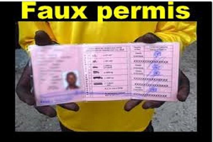 Le Directeur des transports routiers : « Plus de 2 millions de faux permis de conduire sont en circulation au Sénégal »