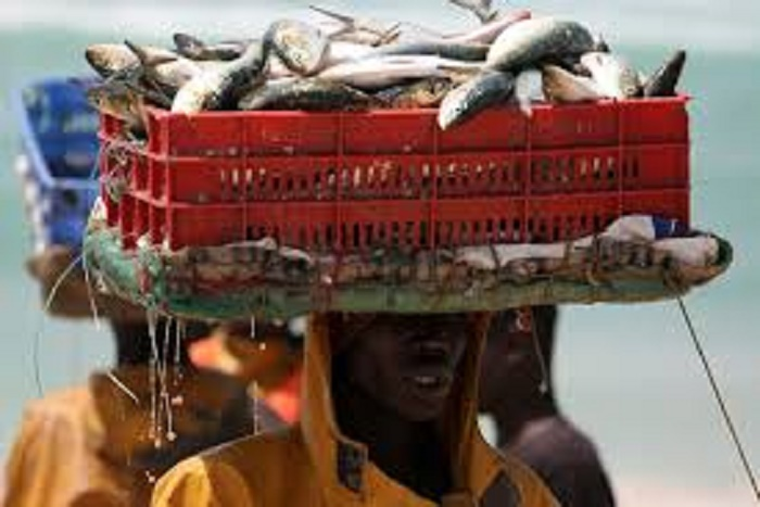 """Message à la Nation  : """"Le Sénégal continue d'améliorer ses efforts sur le plan économique"""",  Macky Sall"""