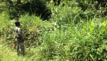 Heurts entre le M23 et les FARDC en RDC: la mise au point de l'armée