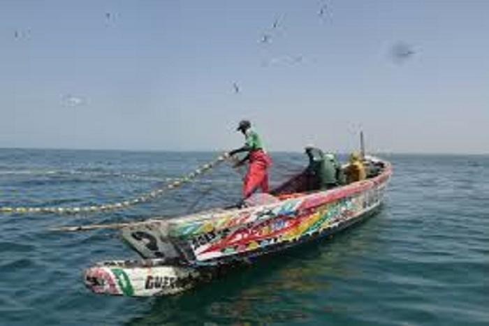 Licence de pêche : les autorités mauritaniennes vont ouvir leurs eaux  Sénégalais