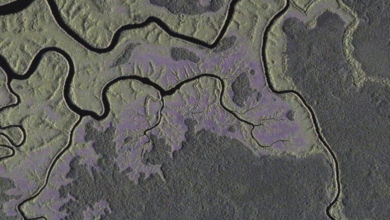 Congo-Brazzaville: entente pour un Fonds de protection du Bassin du Congo