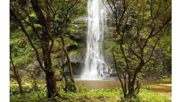 Accident dans les chutes d'eau de Kintampo, 19 morts — Ghana