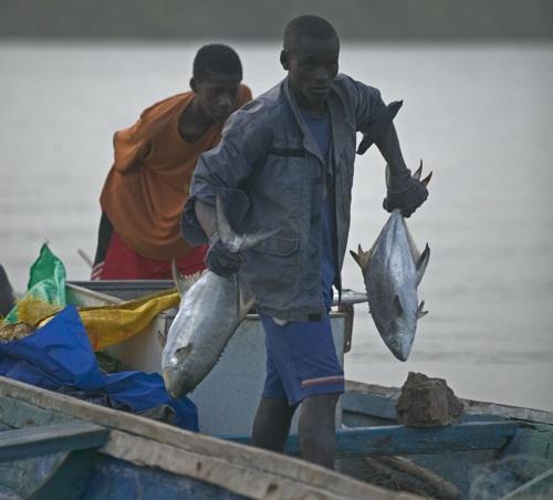 Retour de pêcheurs sénégalais
