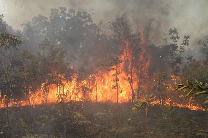 Ranch de Dolly : le feu continue à se propager