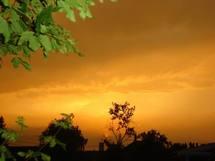 Hivernage 2009: Des précipitations plus faibles que celles de 2008 en vue selon le CILSS