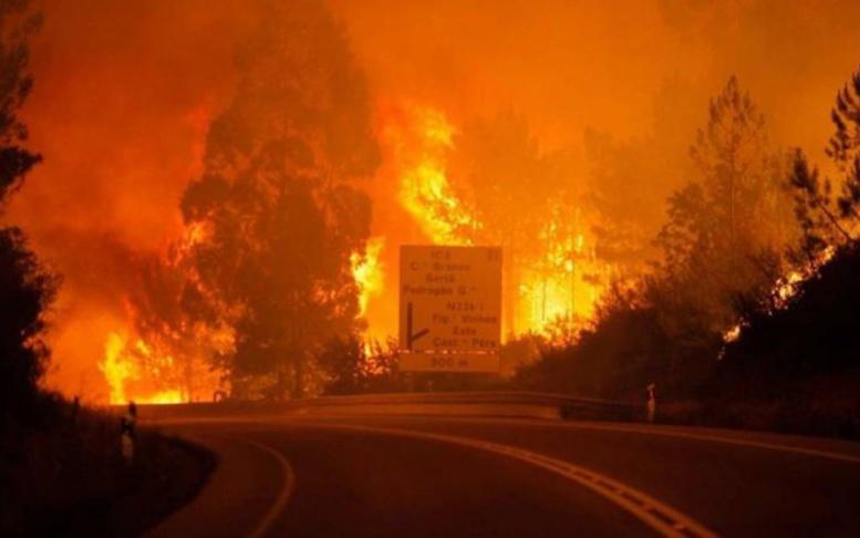 Le Portugal sous le choc : Un gigantesque incendie fait près de 60 morts et...