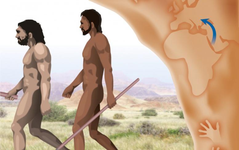Le berceau de l'humanité ne serait peut-être pas en Afrique