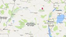 RDC: ce que l'on sait de la violente attaque de gardes d'une réserve de l'Ituri