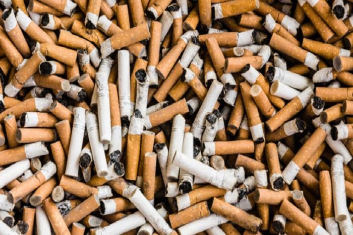Saint-Louis : 1106 grosses de cigarettes saisies par la douane