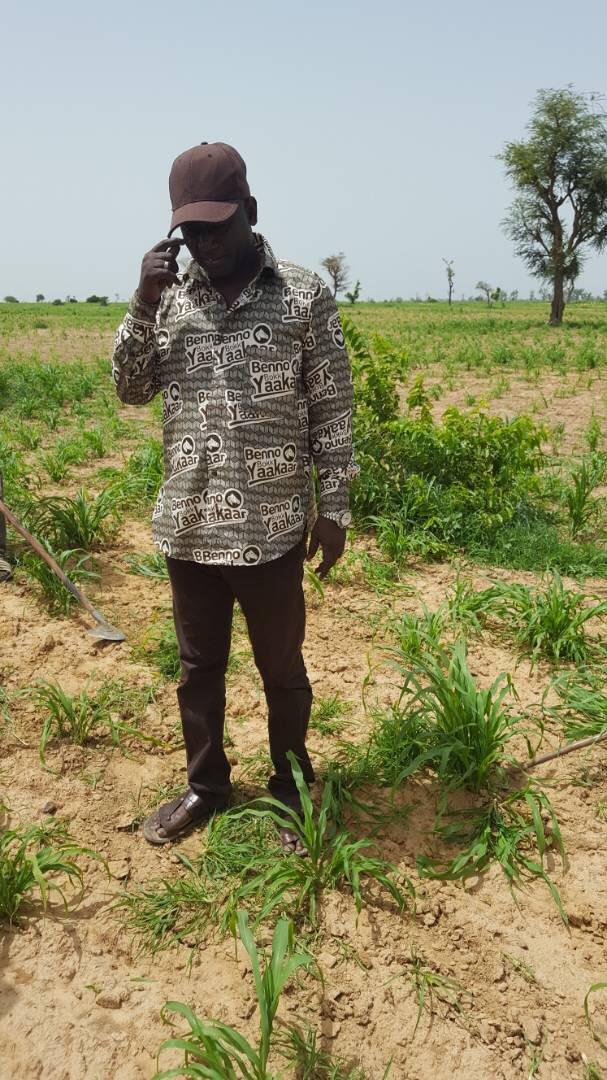 Commune de Ndiaganiao : Benno rafle la mise