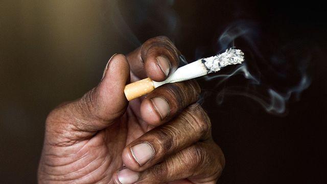 Place de l'Obélisque : Des expositions pour  alerter les populations sur les méfais du tabac
