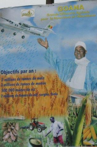 """Situation cahotique des filières agricoles: """"de l'abondance la Goana a fini au gâchis"""", selon des producteurs"""