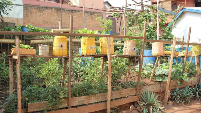 Madagascar: l'agriculture urbaine pour nourrir les habitants d'Antananarivo?