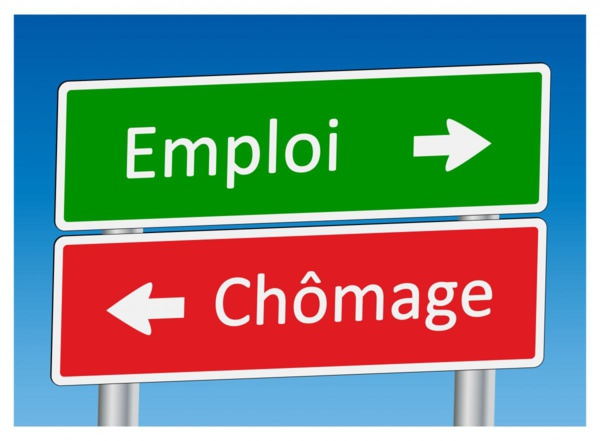 Sénégal : Le taux de chômage évalué à 10,8%, (enquête)