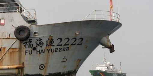 Pêche Afrique de l'Ouest : la Chine retire les licences des compagnies impliquées dans des activités illégales (Communiqué)