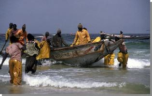 Attribution de licence de pêche: La Mauritanie envisage de réduire les 300 licences attribuées au Sénégal