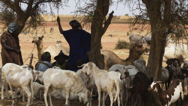 Mali : dogons et peuls font la paix