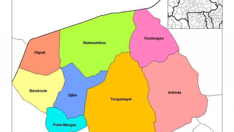Burkina Faso: trois personnes tuées par balles à Niafo, dans le Soum