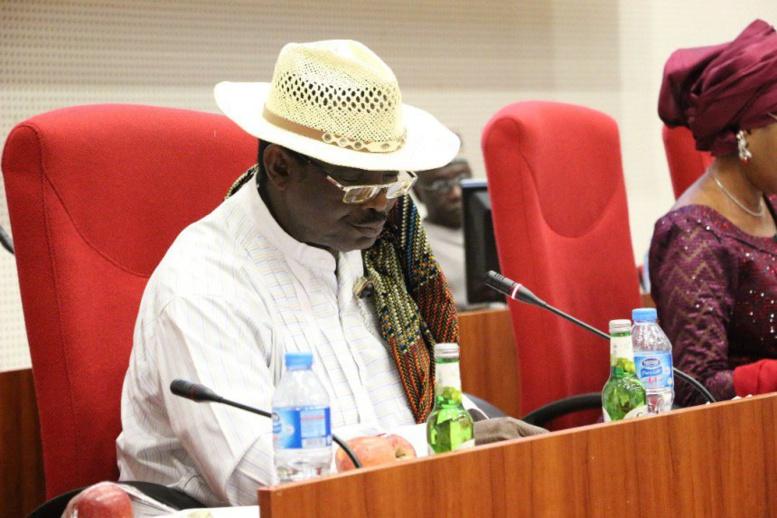 """Un sénateur nigérian épinglé pour """"faux"""" doctorat"""