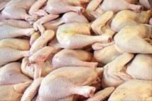 Korité-2018 : 11 millions de poulets attendus sur le marché