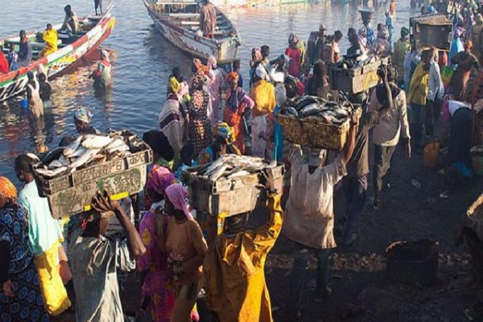 Accords de pêche : les mareyeurs sénégalais de Mauritanie demandent à ceux du Sénégal de se taire