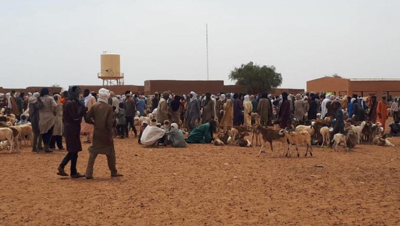 Mali: face à la sécheresse, les éleveurs quittent Ménaka pour le Niger
