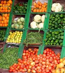 Horticulture-Exportation: Le Sénégal a connu une augmentation régulière et une diversification des marchés de destinations