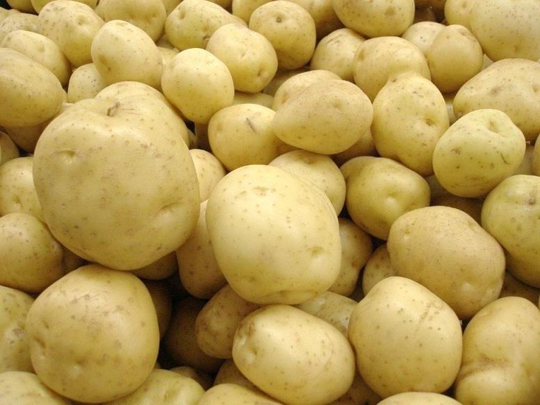 Tabaski 2018 : L'Unacois/Jappo redoute une pénurie de pomme de terre