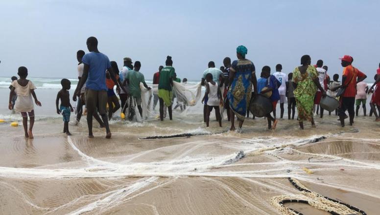Mbour : les pêcheurs rejettent l'arrêté du ministre Omar Gueye