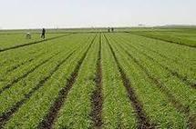 Le secteur de l'agriculture analysé par les cadres de la LD