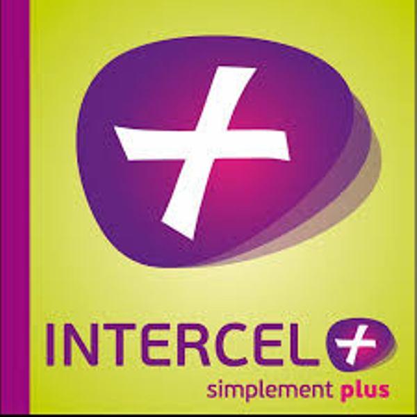 L'Etat guinéen met fin aux activités d'INTERCEL+