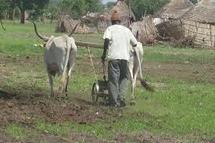 Quelques mesures pour permettre au monde rural d'accéder aux microcrédits par les garanties foncières