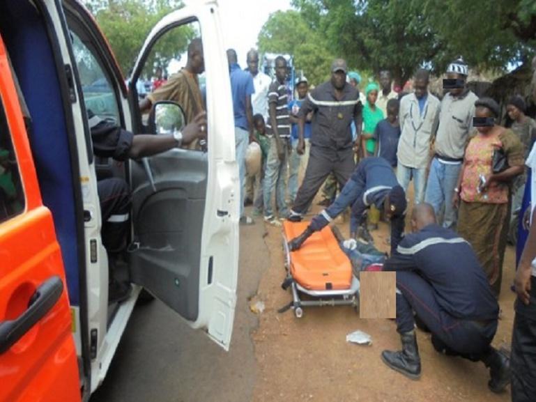 Drame à Matam : Un homme tué par ses chevaux