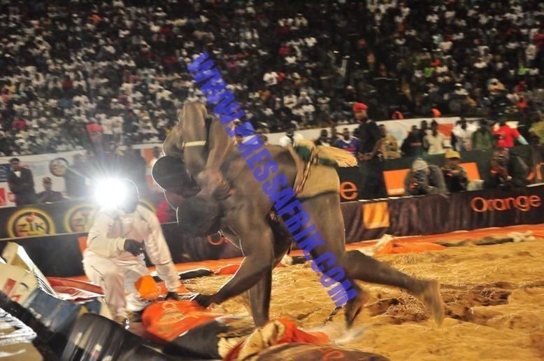 Photos & Vidéos-Lutte: Eumeu Sène brise l'élan du nouveau tigre de Fass