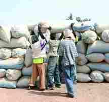 Pour le non respect de leurs engagements, les stocks d'arachides des huiliers seront saisis