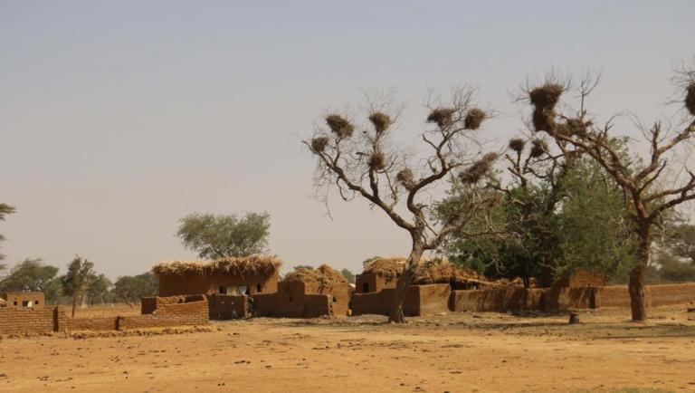 Mali: tuerie dans un village peul du centre