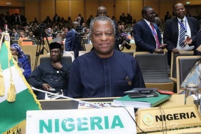 Nigeria-USA : Elections 2019, les USA priés de « ne pas dépasser la ligne de démarcation »