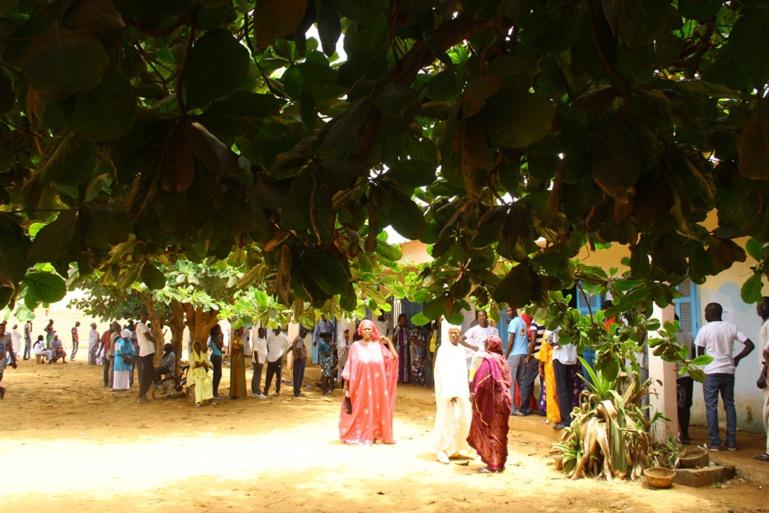 Suivez en DIRECT le scrutin de ce 24 février 2019 au Sénégal