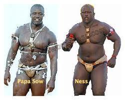 Lutte-Combat: Papa Sow vs Ness en direct sur Pressafrik.com