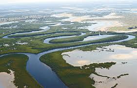 Le Delta du Saloum désormais patrimoine mondial de l'UNESCO